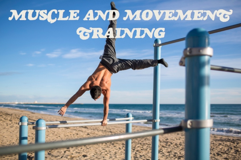 muscle and movement training
